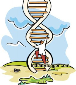 dna_ladder