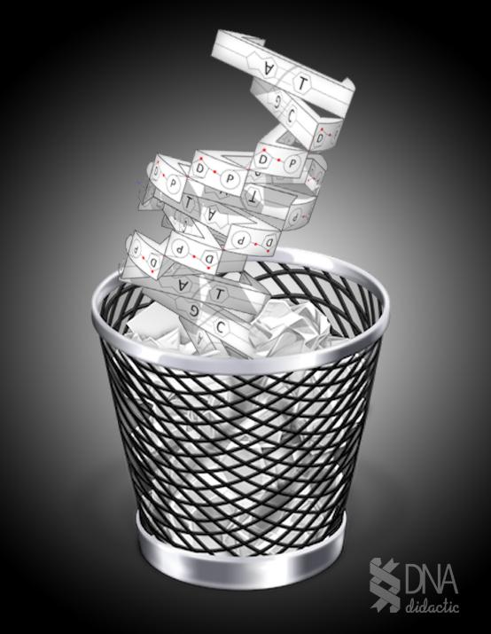 ADN basura: la burocracia del genoma