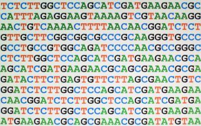 Secuenciar el ADN
